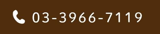 03-3966-7119
